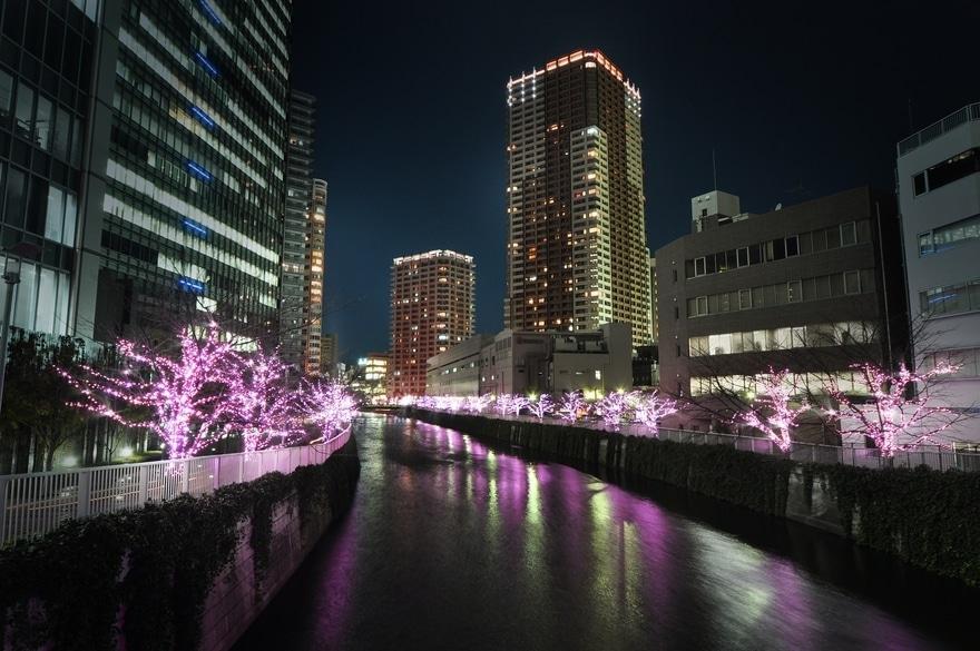 illumination de Noël au Japon